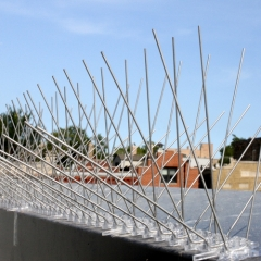 Anti Bird Spikes